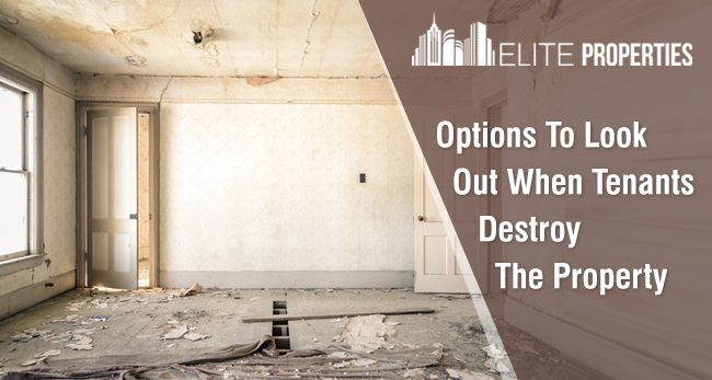 Options To Look Out When Tenants Destroy The Property